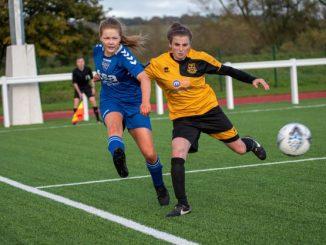 Durham Cestria hit six against Norton