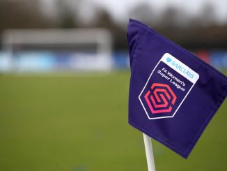 Barclays FA Women's Super League corner flag,