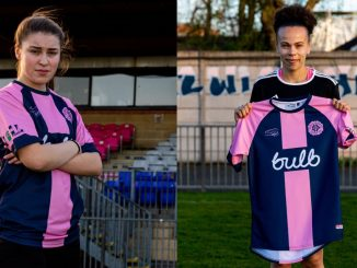 Dulwich Hamlet's new signigs