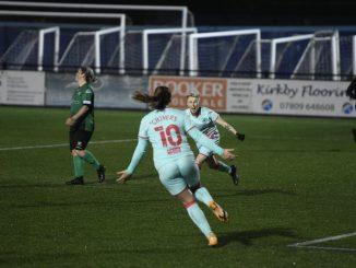 Swansea City reach Welsh Premier Cup Final
