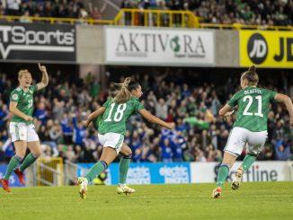 Northern ireland celebrate a goal at Windsor Park